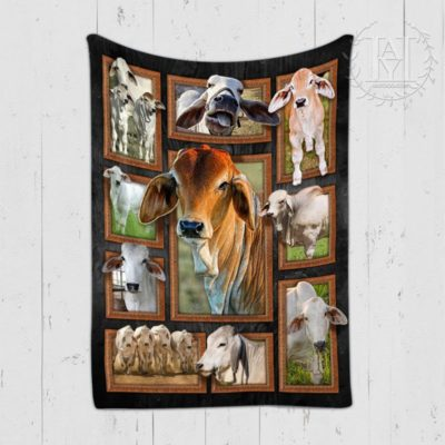 Cute Brahman Cattles Cow Blanket